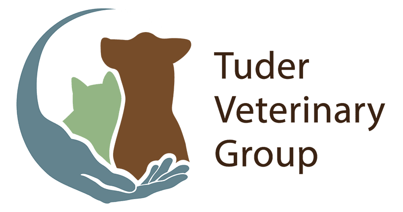 Tuder-Veterinary-Group-Small